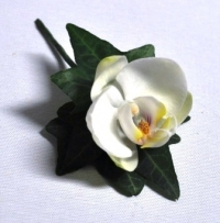 Premium Buttonhole - Click to enlarge picture.